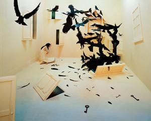 Black birds, 2009